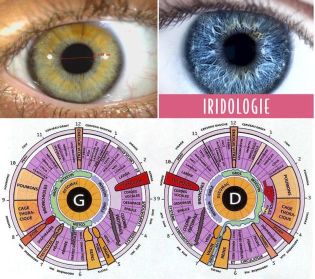 Conférence iridologie - Thierry Gandolfi - Centre Loona - Foix